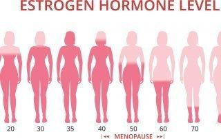 HA_Menopause hormones